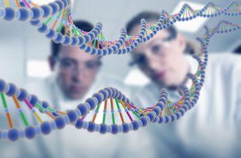 A Genética Não Tem Importância Para a Sua Saúde